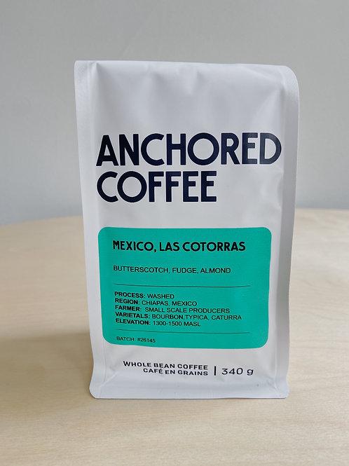 Mexico, Las Cotorras Espresso Coffee | Anchored Coffee