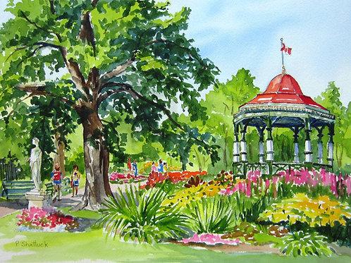 The Public Gardens | Pat Shattuck
