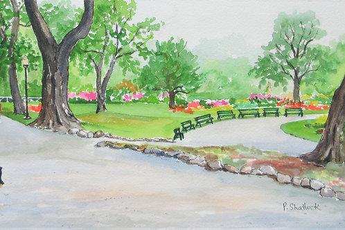 Beneath the Towering Elms, Public Gardens- Original Painting | Pat Shattuck