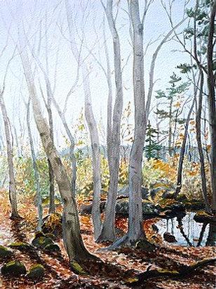 Reaching for the Sun- Original Painting   Pat Shattuck