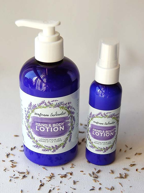 Hand + Body Lotion | Seafoam Lavender Co.
