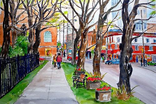 Spring Trees, Spring Garden Road | Pat Shattuck