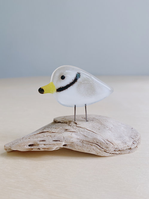 Small Standing Plover   The Glass Bakery
