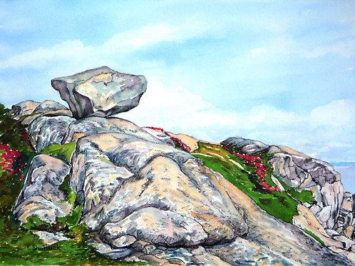 Perched at Chebucto Head- Original Painting | Pat Shattuck