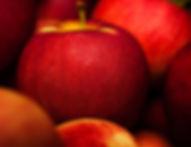 Crisp refreshing Wisconsin Apples
