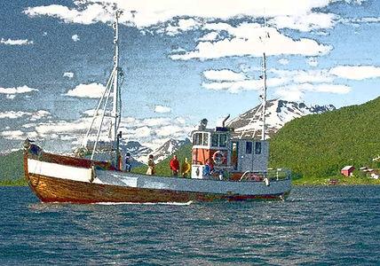 Illustrationsfoto Fischen im Fjord