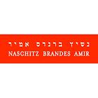 Nashitz.png