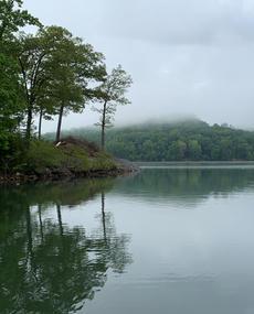 pretty foggy reflective.jpeg