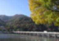 kyo_d14a.jpg