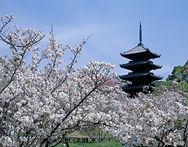 Hiroshima-peace31.jpg