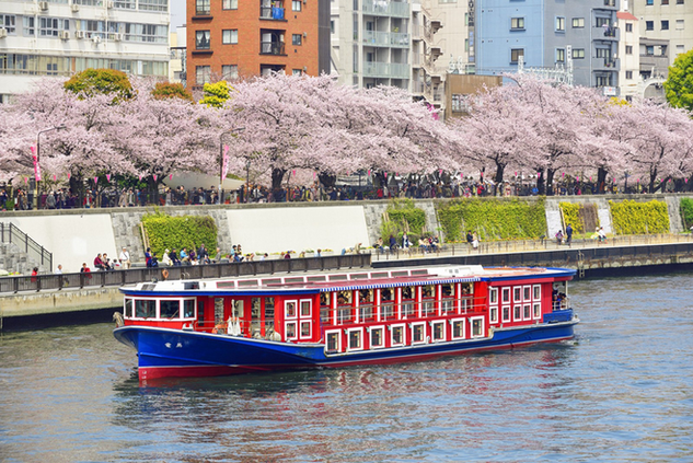 Meguro River Cruise
