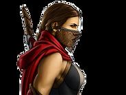 Assassin_fem_sml_edited_edited.png