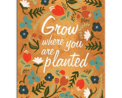 "Are you ready to ""Grow Where You are Planted""?"