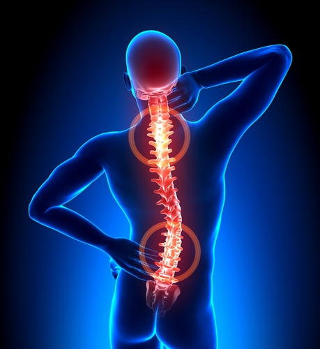Neck & Back Pain Physical Therapy