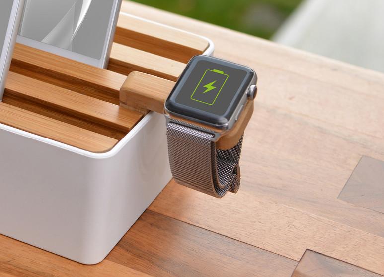 6115 White Bamboo Medium + 5873 Watch (3