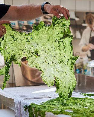 Tørret tang som er klar til at bruges som mad ved tangfestival i Anneberg Kulturpark