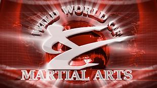 WildWorldofMartialArts-s02-e201_poster.p
