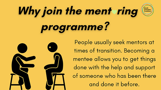 Why Mentoring_  .png
