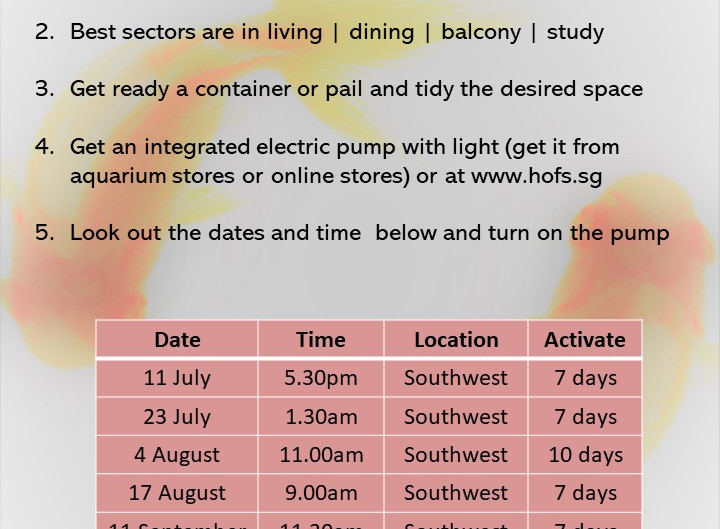 Wealth Activation Dates July to December 2020.