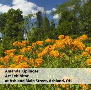 Amanda Kiplinger Art Exhibitor