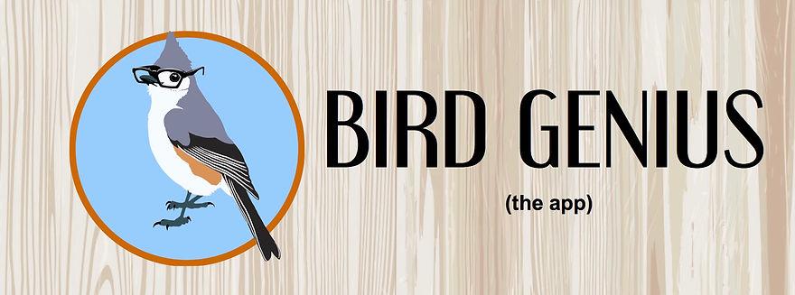 Bird Genius poster Facebook header 4.jpg
