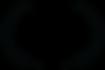 OFFICIALSELECTION-BigFandomFilmFestival-