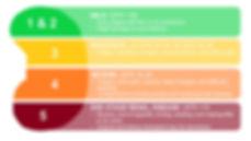 Kidney-chart.JPG