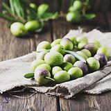 オリーブの果実