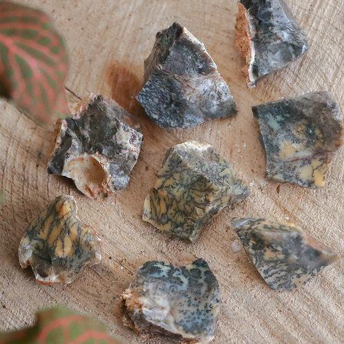 Opala Dendrítica em Bruto 3 a 6 cm