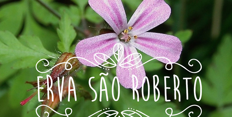 Chá de Erva São Roberto 30 g