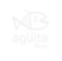 logo_agu%CC%88ita(byn)_edited.png