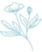 skincare pdf flower 2.PNG