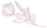 skincare pdf flower.PNG