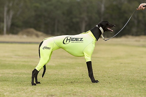 Hidez Printed Compression Suits for Whippets - Yellow