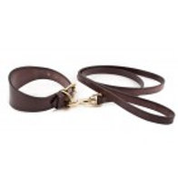 English Bridle Collar & Lead Set