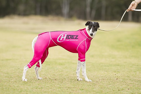 Hidez Printed Compression Suits for Whippets - Pink
