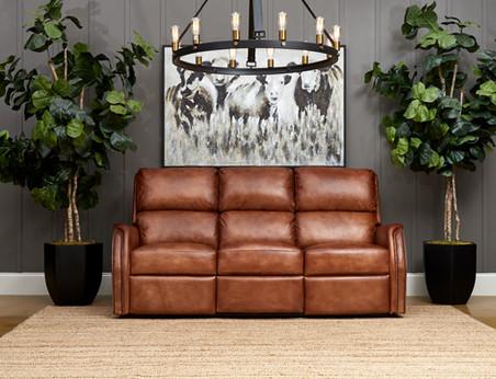 leather sofa reclainer.jpg