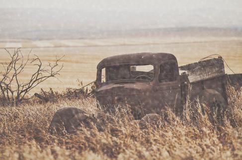 Abandoned Truck in Field.jpg