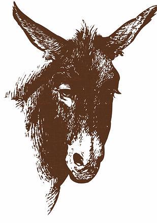 Donkey-image-background-web_edited.jpg