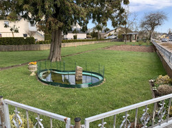 Garten Wohnhaus