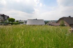 Wershofen_29