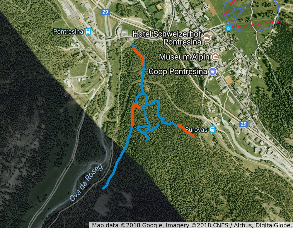 A map of our transect routes in the forest