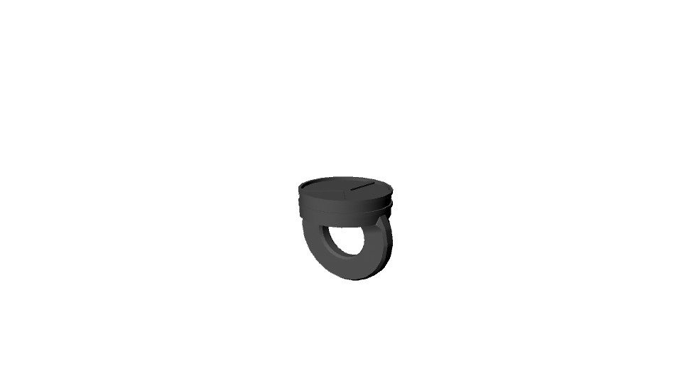 Angelo's Ring Model.png