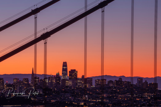 City Through the Cables