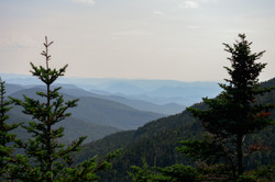 View from Mt. Mansfield