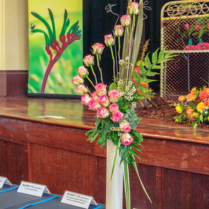 Guildford Townhall Spring Show 2018