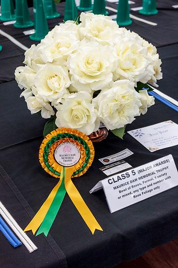 Maurice Daw Memorial Trophy 2017 (White