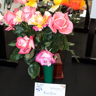 Sping Rose Show 2017