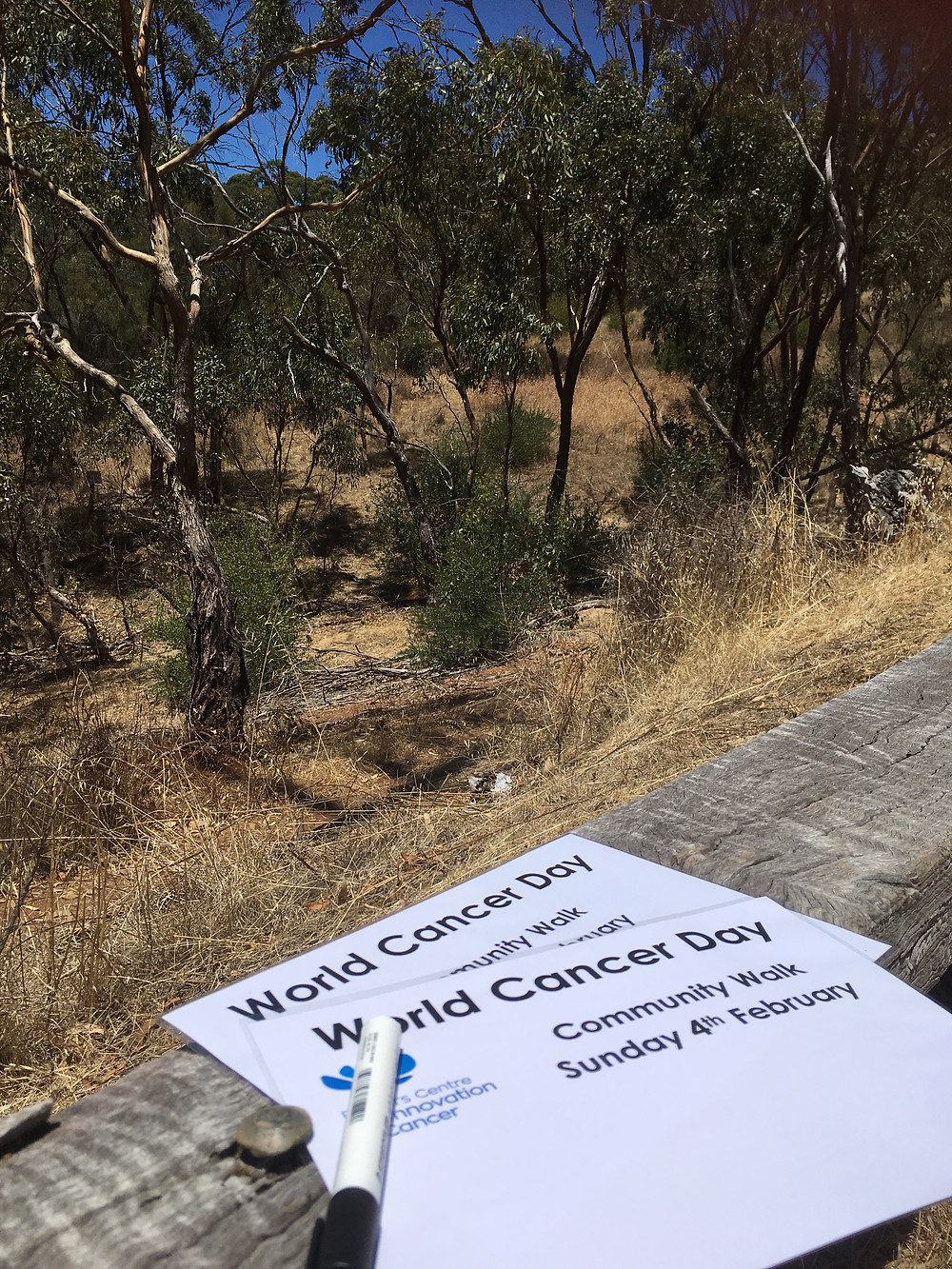 Bushwalk to recognise World Cancer Day and acknowledge that together we can make cancer a thing of the past