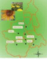 studio pegaso servizi agroambientali, progettazione reti biomonitoraggio, api, bioindicatori suolo, insetti selvatici